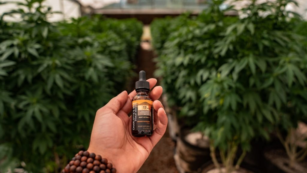 Is Hemp oil the same as CBD oil- Whats the difference?